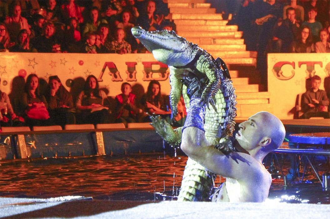 Київський цирк до літа залишився без манежу